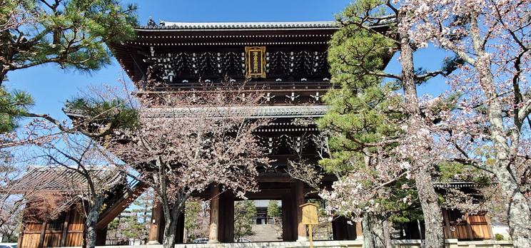 Konkai Komyoji, Kyoto, Miyabi Kyoto Kanko Taxi