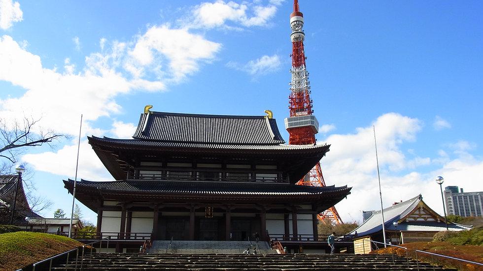 9 Days in Tokyo, Hakone & Kyoto FLIGHT+HOTEL package