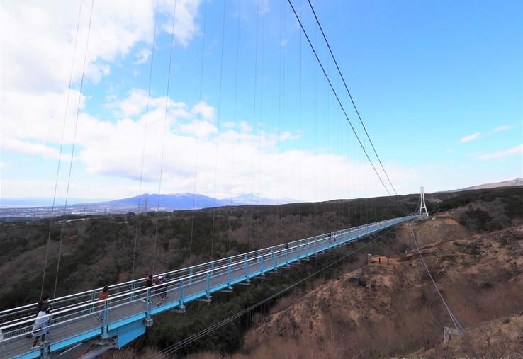 9. Mishima Skywalk.jpg