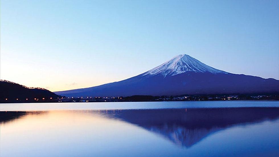 Mt. Fuji and Hakone, Full Day