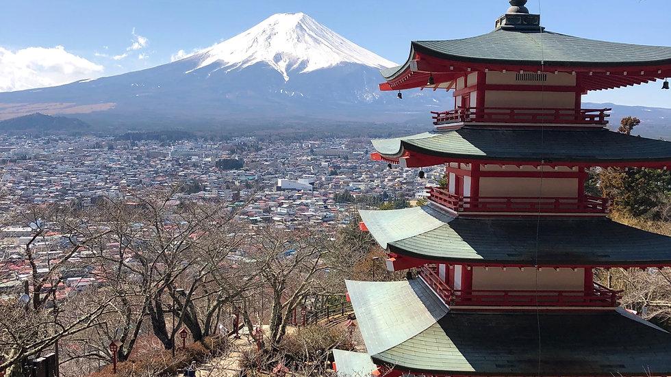 8 Days in Tokyo, Hakone & Kyoto Hotel Package (Standard)