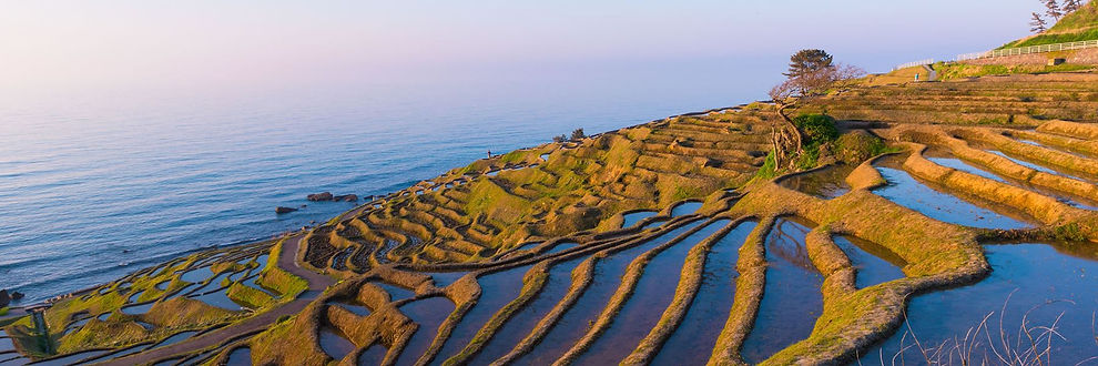 noto peninsula.jpg