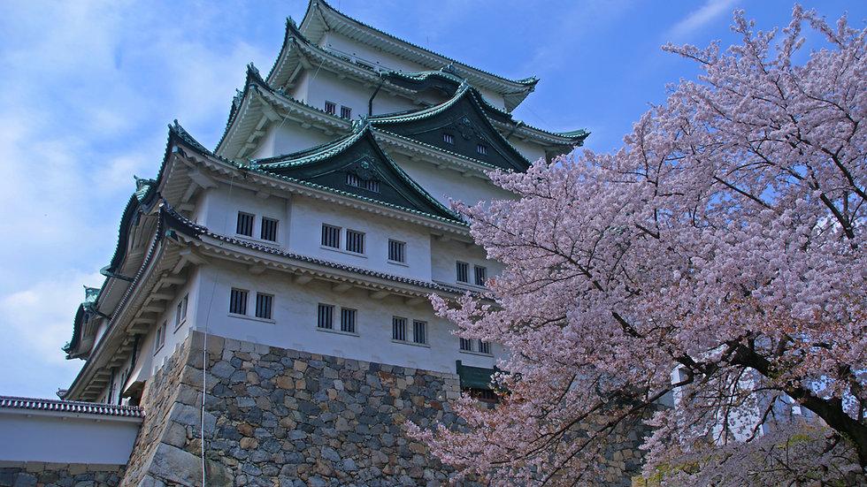 """Become a Shogun for 10 days!""  5 Cities, 5 Castles"