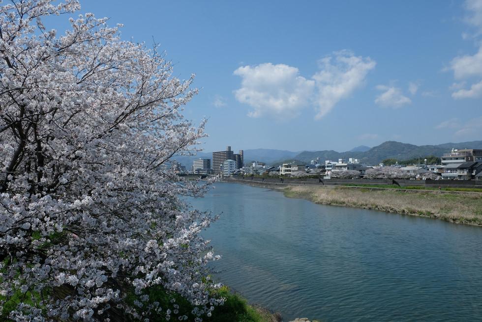 Kagami River, Kochi, Kochi Visitors _ Convention Association