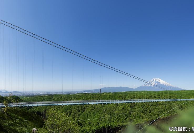 3. Mishima Skywalk.jpg