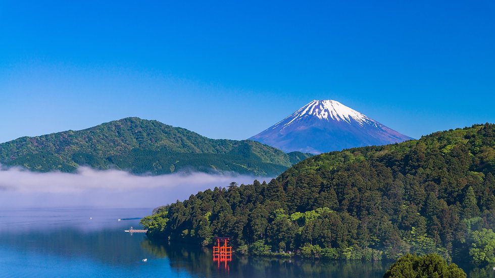 Hakone 1 Day Package Round-trip from Tokyo with private car and guide in Hakone