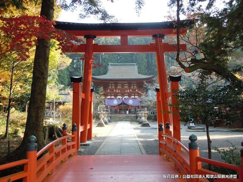 9. Niutsuhime-jinja Shrine.jpg