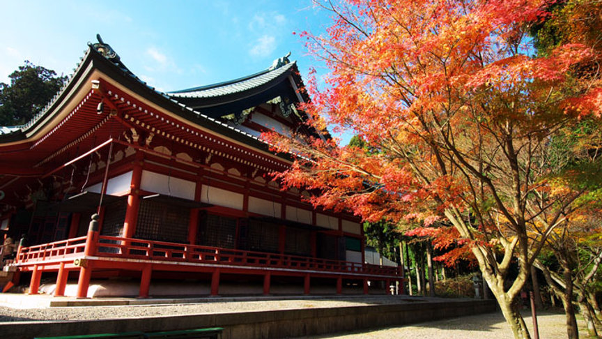 Kyoto Private Tours -6-HOUR Half Day Tour-