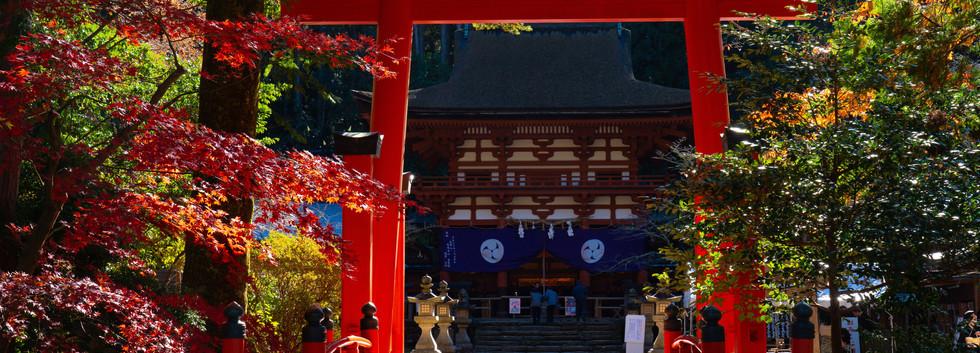 10. Niutsuhime-jinja Shrine.jpg