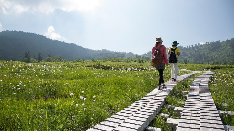 Trail Walking Tour at Murodo and Midagahara 2-Days