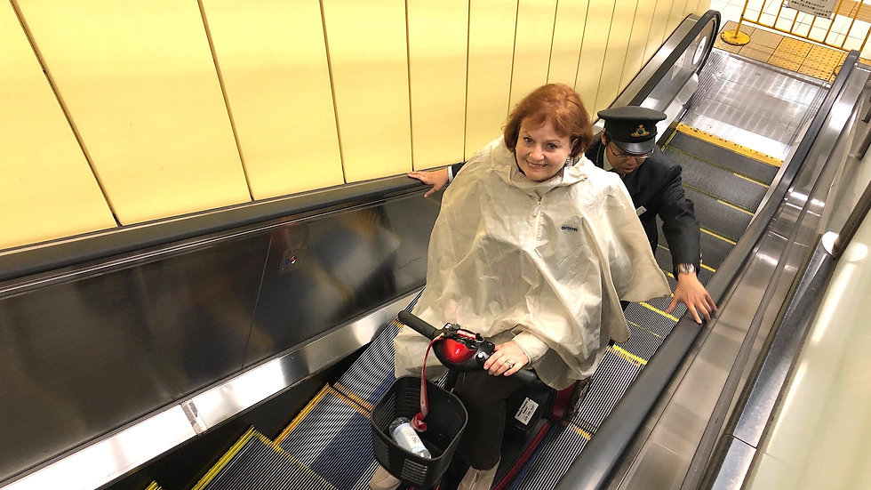 1-Day Barrier-Free Osaka Tour for Wheelchair Users