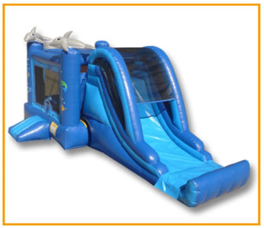 Dolphin Combo Dry