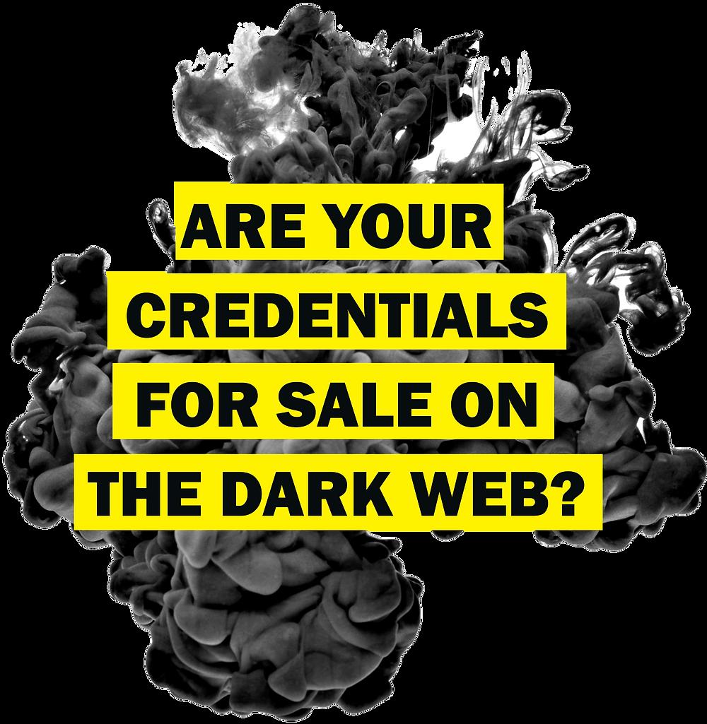 What is cybersecurity? -   Dark Web Scan by Cloudskope