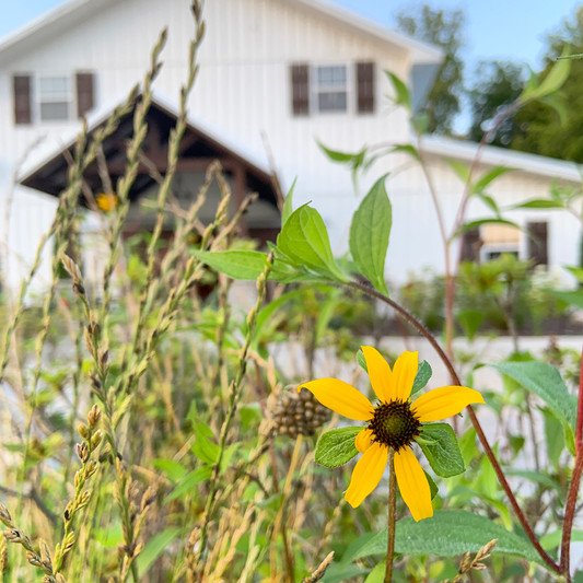 Wedding barn with flowers