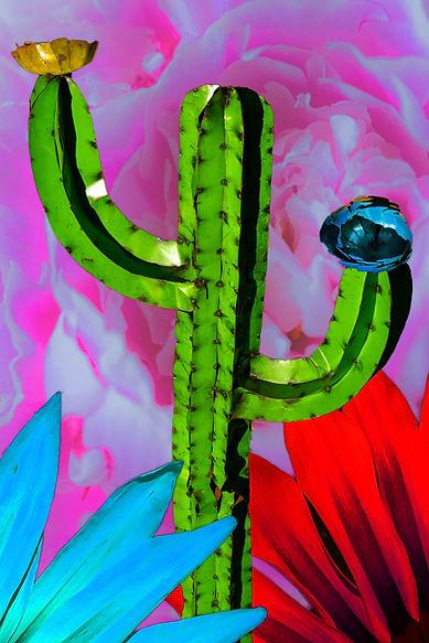 CactusFunk2.jpg