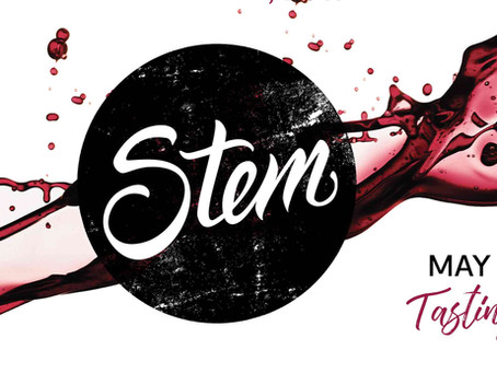 Locus at Stem at the Pacific Science Center on May 17th