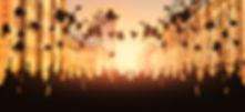 AdobeStock_189892196.jpeg