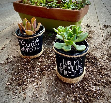 Succulent Pots- Dry Humor/ Plant Mom