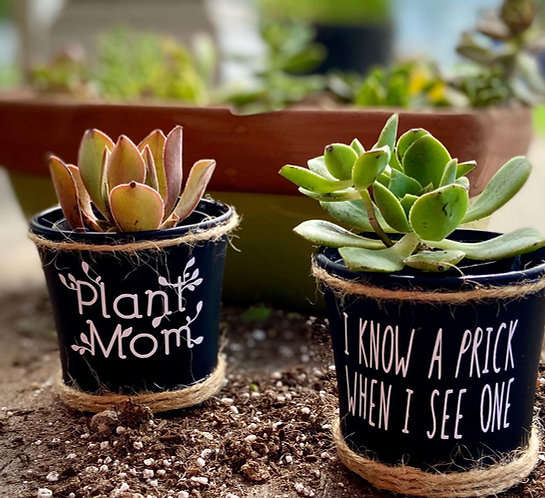 Plant Mom Succulent Pot