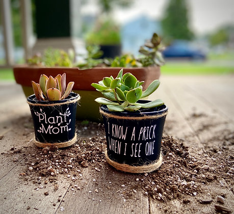 Succulent Pots (2) - Plant Mom/ Prick