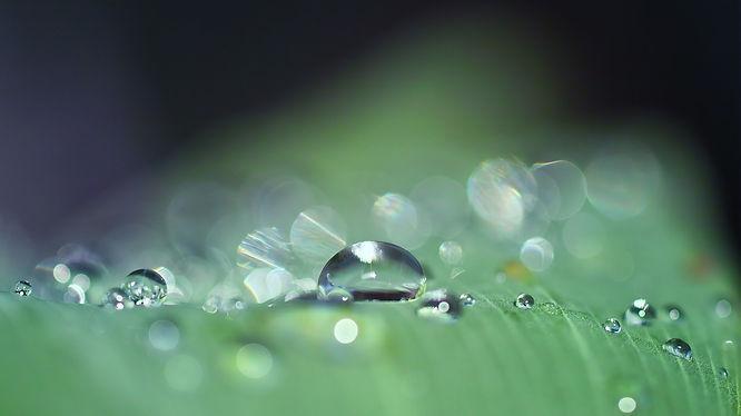 drop-of-water-3671613_1920.jpg