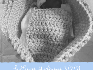 Sullivan Anderson | Featured Story
