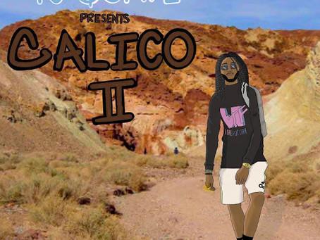 Back 2 Calico We Go!
