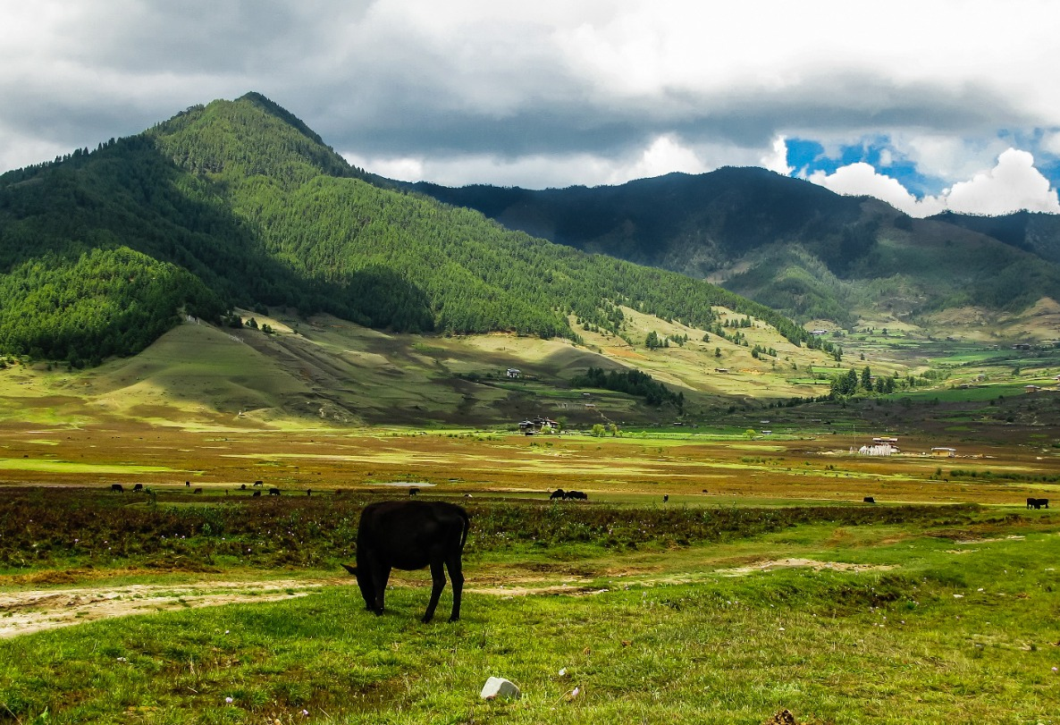 Photo Tour Bhutan Gantey Valley