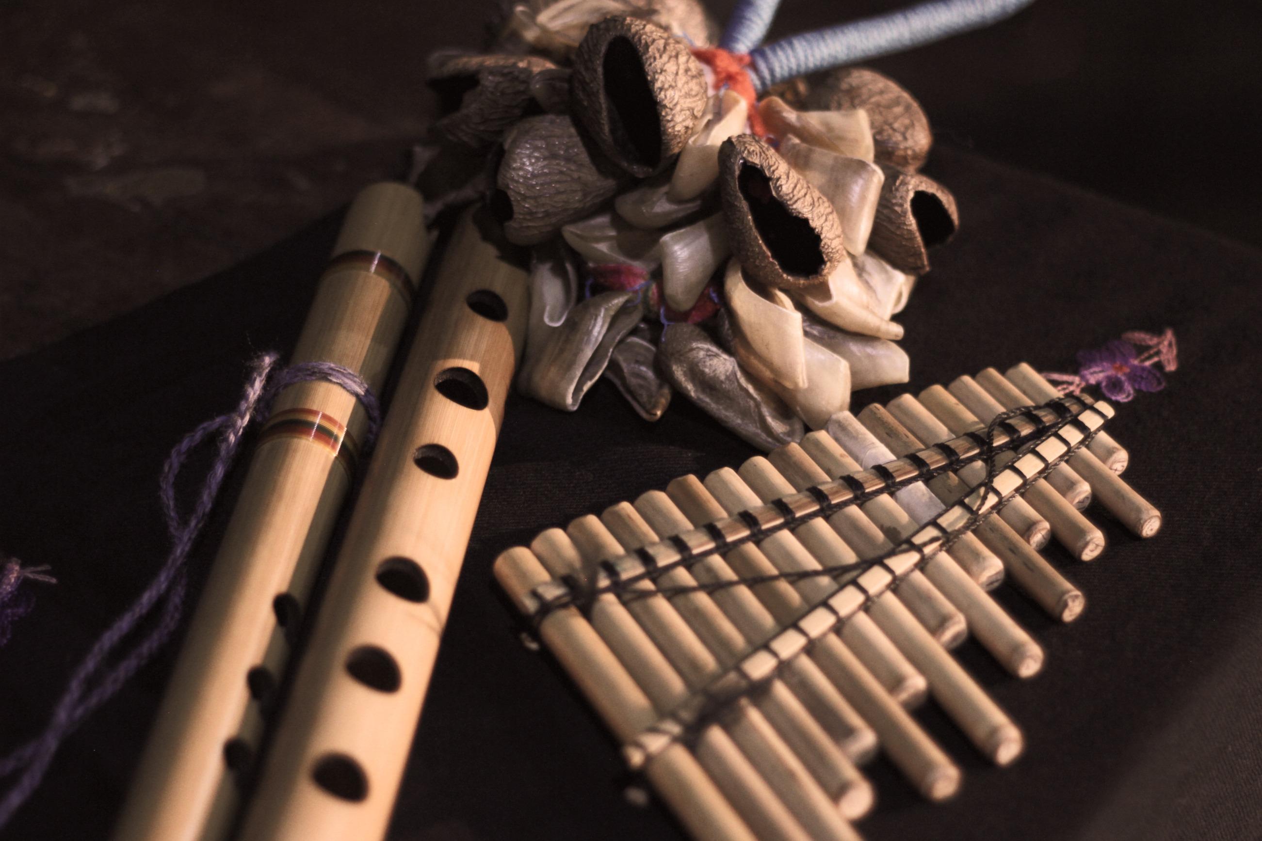 Instrumentos Andinos