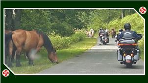 Un ride inoubliable au Pays Basque...