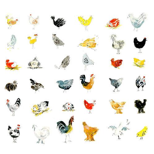 """My Chickens"" Print"