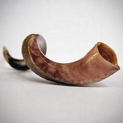 product-shofar-1000x1000.jpg