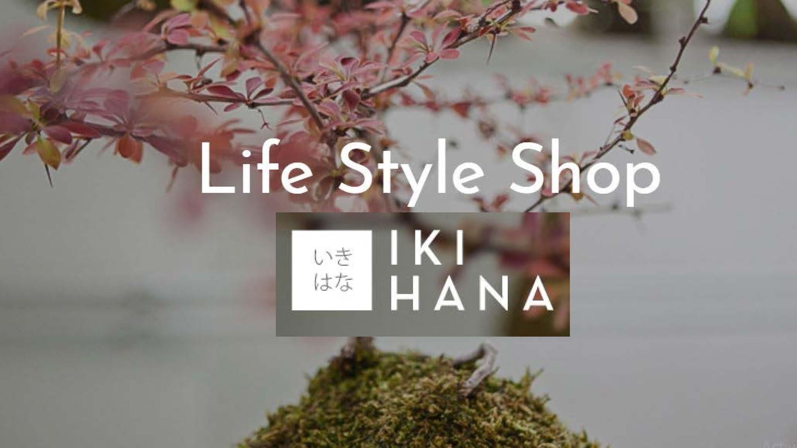 Votrelife_style_shop_à_Chalon-sur-Saône
