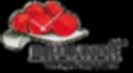 Brunner-Logo.png