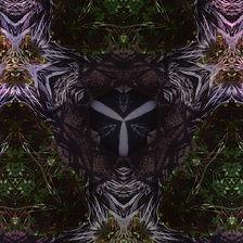 void chamber art band.jpg