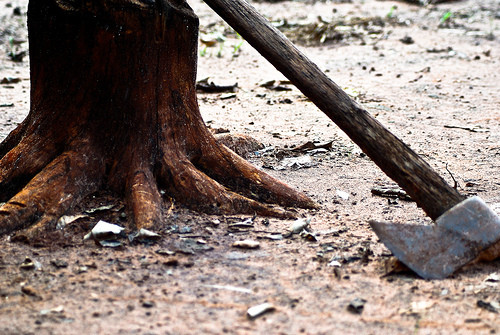 The axe at the root of the tree