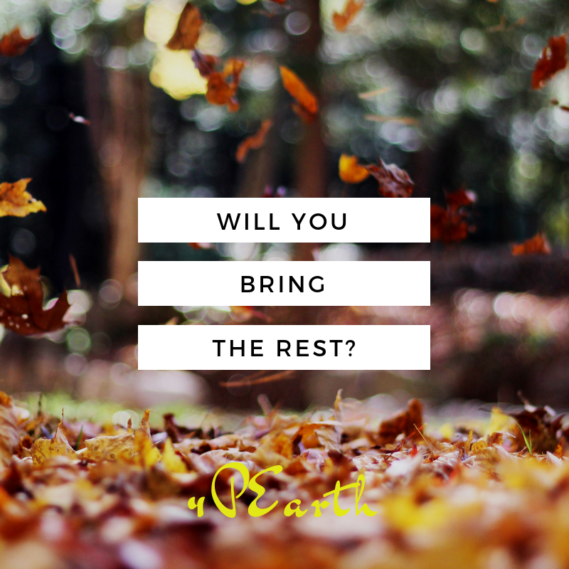 Will You Bring Rest?