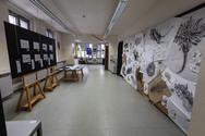 UJEP Fakulty umění a designu