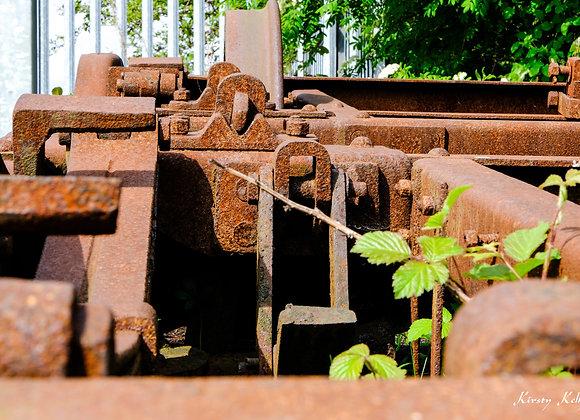 Abandoned Train and Bramble