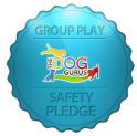 group play safety bdge.JPG