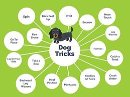 Dog Tricks List.png