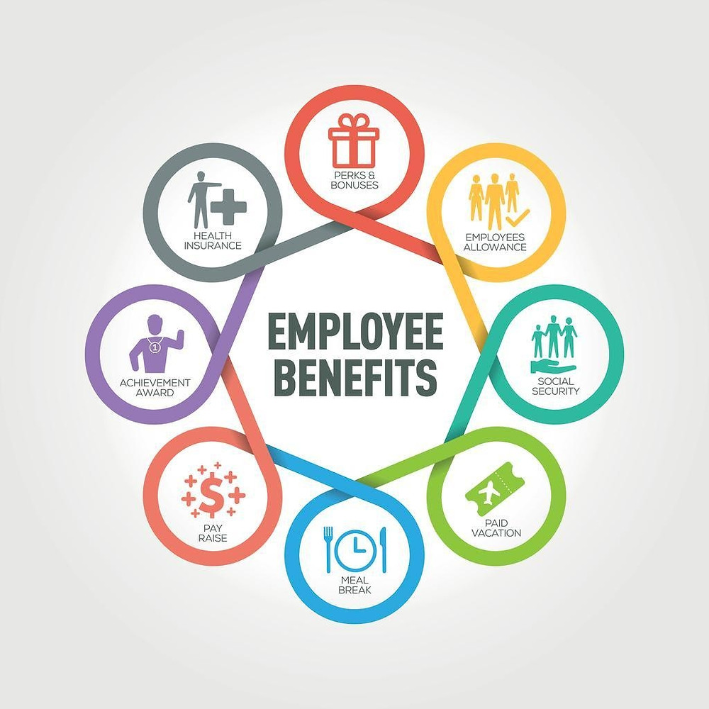 Employee benefits offerings for PEOs