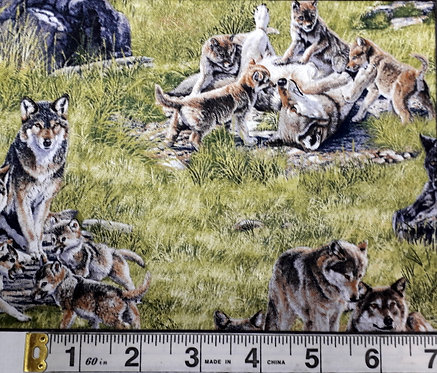 North American Wildlife - Wolf Family