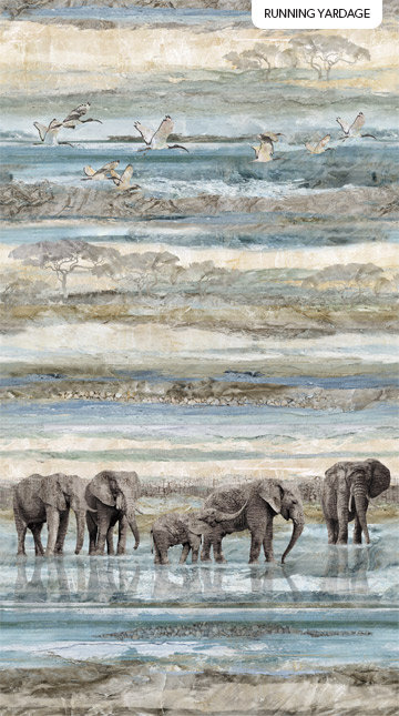 New Dawn - Elephants