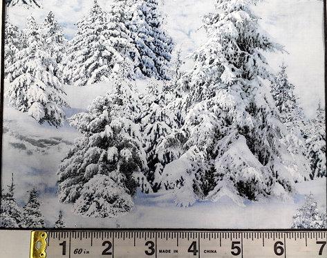 Landscape Medley - Snowy Mountain