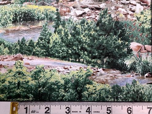 Landscape Medley - Stoney Creek