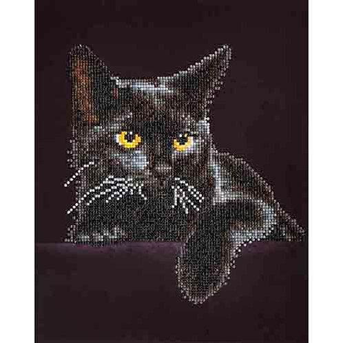 Diamond Dotz Midnight Cat