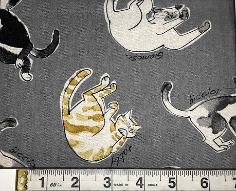 Misono - Cats Grey