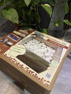 Pilzmännchen - Champignon Pilzzuchtset für Zuhause