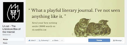 Lit.cat The Literature Box of the Internet